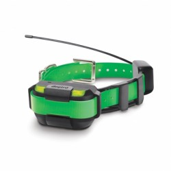Collar Verde suplementario MINI Pathfinder DOGTRA