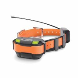 Collar Naranja suplementario MINI Pathfinder DOGTRA
