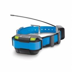 Collar Azul suplementario MINI Pathfinder DOGTRA